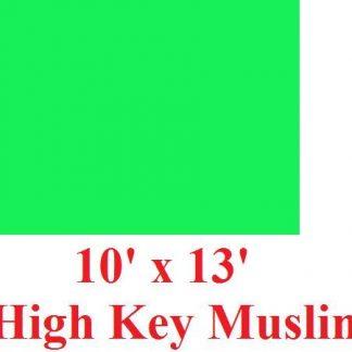 NEW heavy duty Green 10'X12' High Key Muslin Backdrop